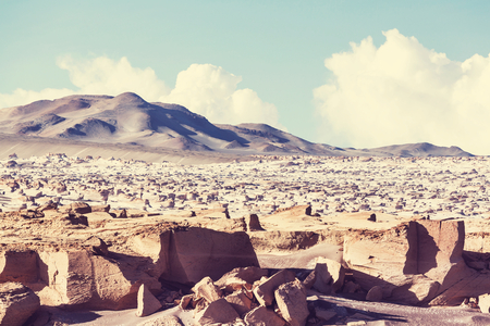 infinity road: Landscapes in Northern Argentina Stock Photo