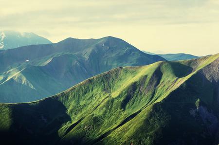 Summer green hills Foto de archivo
