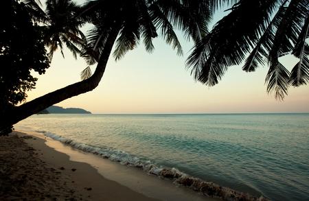 serenity: Serenity tropical beach