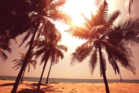セレニティ トロピカルビーチ