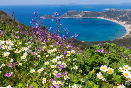 corfu: Corfu island landscapes in Greece.