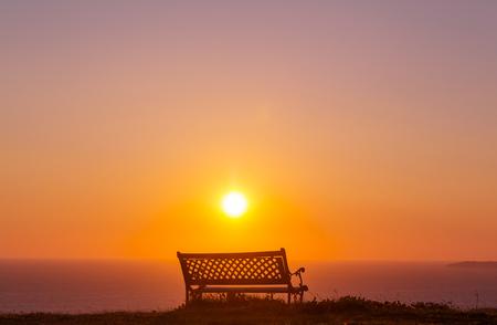 park bench: Bench in garden at sunrise in spring season