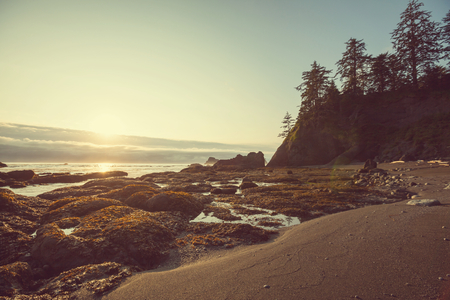 Olympic National Park landscapes Stock Photo
