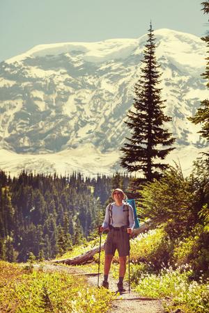 mt hood: Hiker in Mt Rainier NP Washington USA