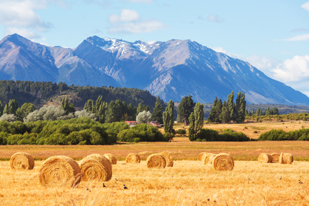 rural landscapes: Rural landscapes in Argentina Stock Photo
