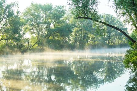 mist: Unusual river fog in summer season
