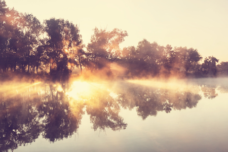 early fog: Unusual river fog in summer season