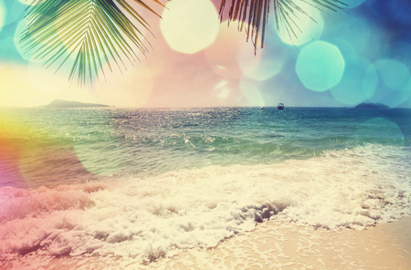 Serenity tropical beach Stock Photo - 40707553
