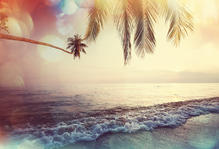 Serenity plage tropicale Banque d'images - 40708230