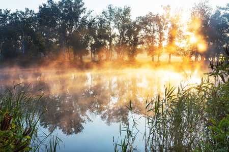 unusual: Unusual river fog in summer season