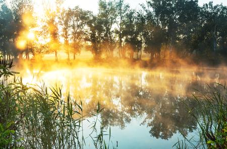 early summer: Unusual river fog in summer season