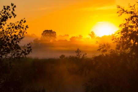 rural landscapes: Rural landscapes at sunrise