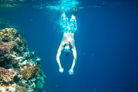 corall: The snorkeling man at coral reef Stock Photo