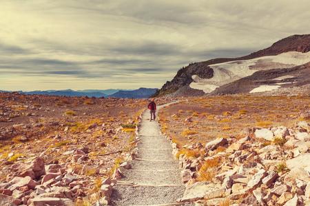 mt rainier: Hike on Mt Rainier