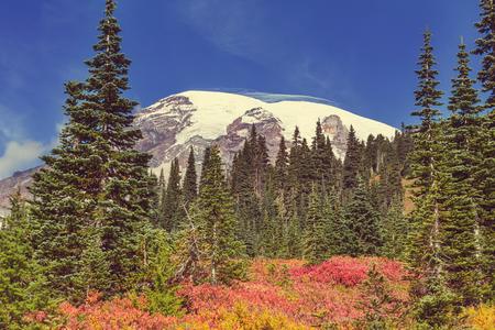 MOUNT RAINIER: Mount Rainier national park Washington
