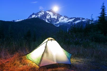 settled: night scene in desert camping