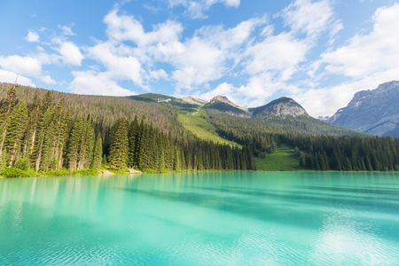 beautiful scenery: Serenity Emerald Lake in the Yoho National Park,Canada Stock Photo