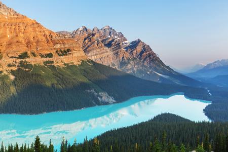canada: Peyto Lake  in Banff National Park,Canada Stock Photo