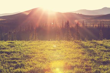 북극 원 위의 툰드라 풍경 스톡 콘텐츠