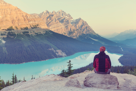 Peyto Lake  in Banff National Park,Canada 스톡 콘텐츠