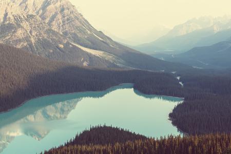 banff: Peyto Lake  in Banff National Park,Canada Stock Photo