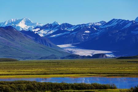 denali: Landscapes on Denali highway.Alaska. Instagram filter.