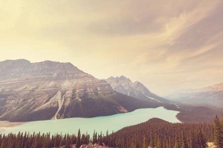banff: Peyto Lake in Banff National Park, Canada