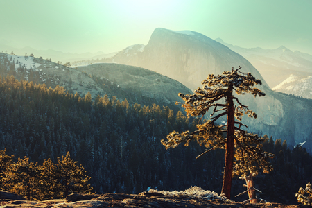 Yosemite landscapes Stock Photo