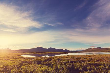 landscape: 在德納裡高速公路,阿拉斯加景觀。 版權商用圖片