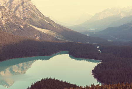 カナダ ・ バンフ国立公園ペイトー湖 写真素材