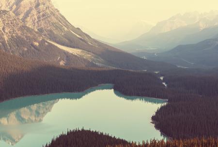밴프 국립 공원, 캐나다 Peyto 호수 스톡 콘텐츠