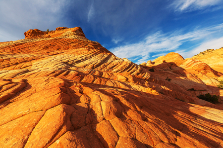 formations: Sandstone formations in Utah, USA.Yant flat.
