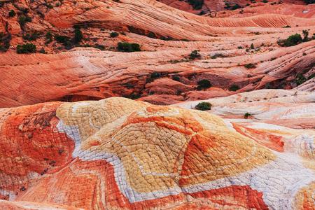 grandiose: Sandstone formations in Utah, USA.Yant flat.