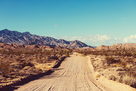 vastness: Landscapes of Northern Argentina Stock Photo