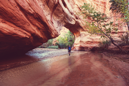 Hike in Coyote gulch, Grand Staircase-Escalante National Monument, Utah, United States