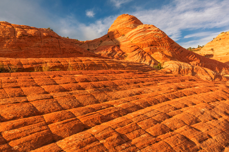 formations: Sandstone formations in Utah, USA. Yant flats