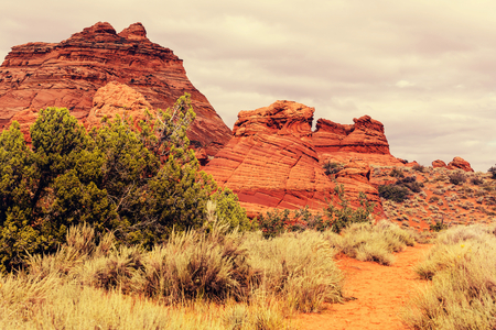 Coyote Buttes of the Vermillion Cliffs Wilderness Area, Utah and Arizona Imagens