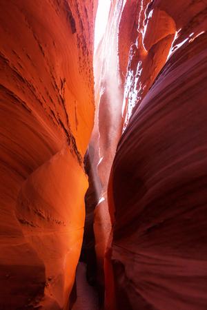 escalante: Slot canyon in Grand Staircase Escalante National park, Utah