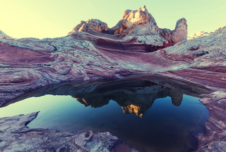 táj: Vermilion Cliffs National Monument Tájak