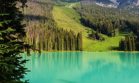 Serenidad esmeralda del lago en el Parque Nacional Yoho, Canadá.