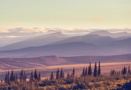 Tundra landscapes above Arctic circle Imagens