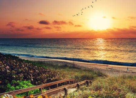 beach sunset: Boardwalk on beach