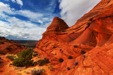 wilderness area: Coyote Buttes of the Vermillion Cliffs Wilderness Area, Utah and Arizona Stock Photo
