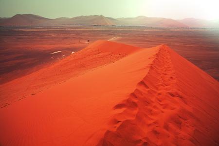 sahara: Sahara desert Stock Photo