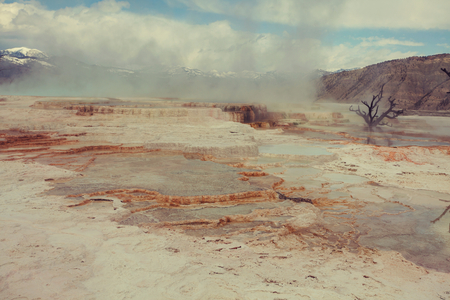 np: Mammoth Hot Springs in Yellowstone NP, USA