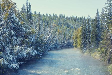 frosty morning: Winter scene. Instagram filter. Stock Photo