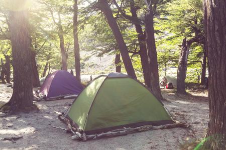 campsite: Tent in a forest campsite