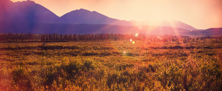 landscape nature: Tundra landscapes above Arctic circle Stock Photo
