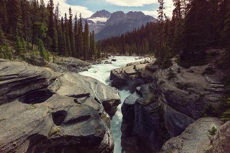 Scenic uitzicht op de rivier Athabasca, Jasper National Park, Alberta, Canada Stockfoto