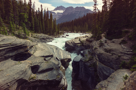Vistas panorámicas del río Athabasca, Parque Nacional Jasper, Alberta, Canadá